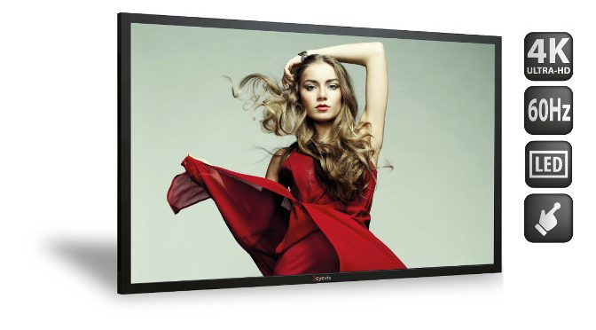 <strong>eyevis 50ʺ-Display EYE-LCD-5000-QHD</strong>